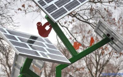 «Cолнечное дерево» установили В Киевском зоопарке