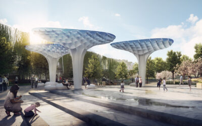 «Солнечные» грибы в центре Будапешта (видео)